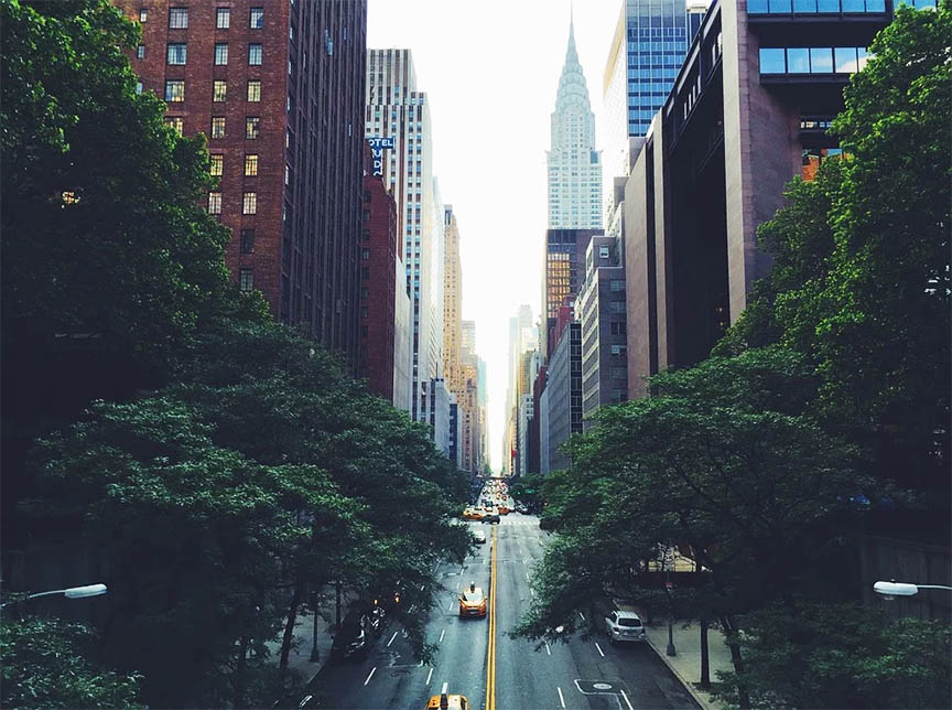 20 Curious things about New York.